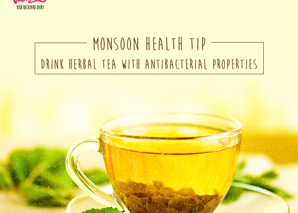 Ayurveda Says These Herbs Help Prevent Monsoon diseases