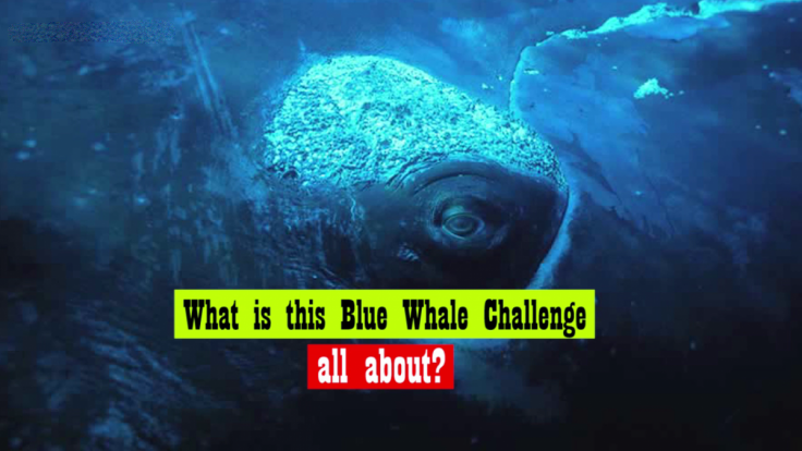 Blue Whale Challenge:  All You Need To Know!!