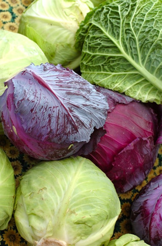 cabbages-1551485