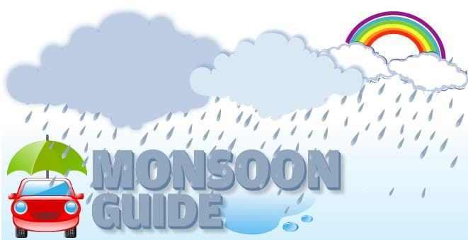 HAPPY AND HEALTHY MONSOON